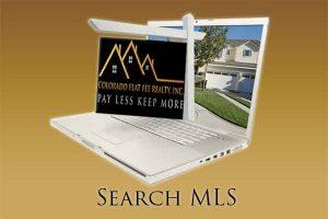 Denver Real Estate MLS